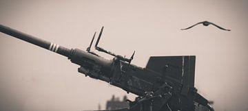 Atlantikwall Waffe von