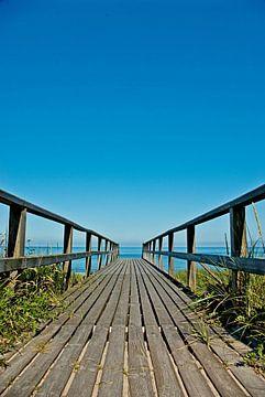 Houten pad naar het strand van Norbert Sülzner