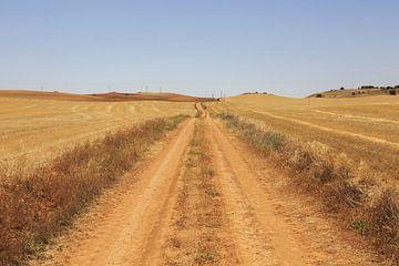 Droog pad naar de horizon