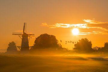 Morgendlicher Sonnenschein von Max ter Burg Fotografie