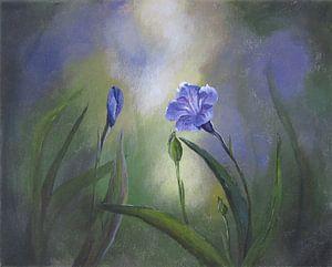 "Impressionistisch schilderij ""Linum (Vlas)"""