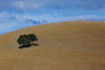 Verlaten boom in Italie van Digitale Schilderijen