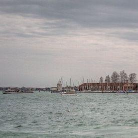 Venice van BL Photography
