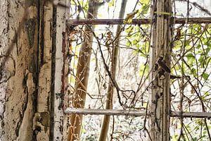 Het raam van HGU Foto