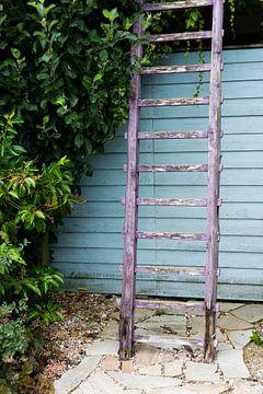 oude ladder in een tuin