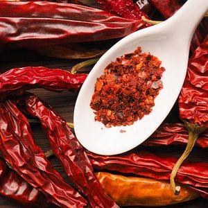 Spicy background with chilies van Andreas Berheide