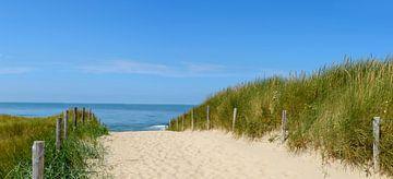 Dünen am Strand mit Beachgras während eines schönen Sommertages am Nordseestrand in Holland. von Sjoerd van der Wal