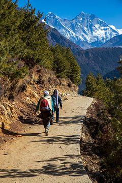 Der Sherpa wird Sie auf dem Weg treffen. von Ton Tolboom