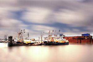 Lauwersoog haven Harbour of Lauwersoog