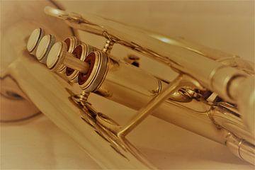 Golden Kornet van