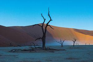 Deadvlei, Sossusvlei, Namibia van Marnix Jonker