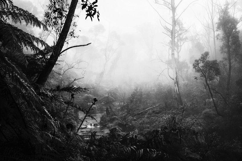 Regenwald im Nebel VII von Ines van Megen-Thijssen