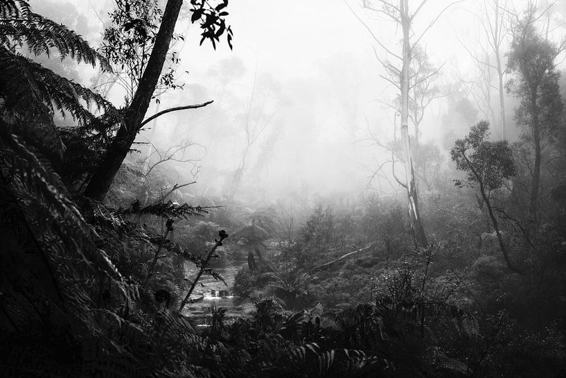 Regenwoud in de mist VII van Ines van Megen-Thijssen