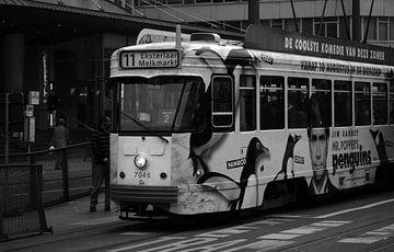 Antwerpse tram von Alphons de Visscher