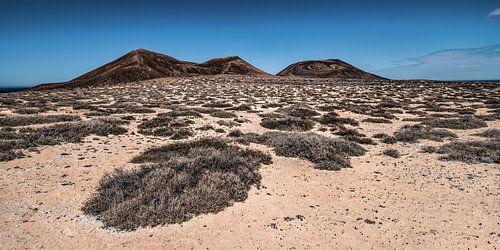 Landschap La Graciosa met El Mojon en de Aguja Grande van Harrie Muis