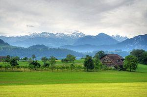 Zwitsers landschap bij Luzern