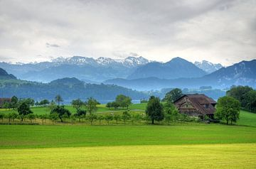 Zwitsers landschap bij Luzern von Hans Kool