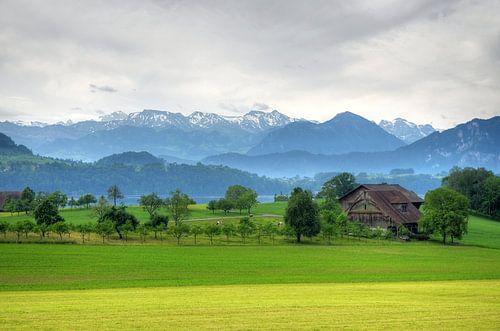 Zwitsers landschap bij Luzern van