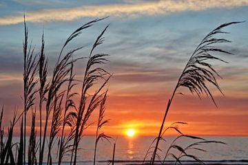 Kleuren van de zonsondergang van Claudia Moeckel