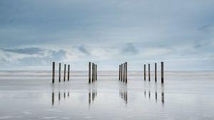 Palen op het strand van Schiermonnikoog  van