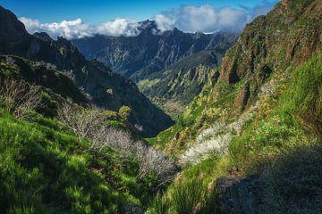 Madeira landschap en bergen bij Pico Ruivo van