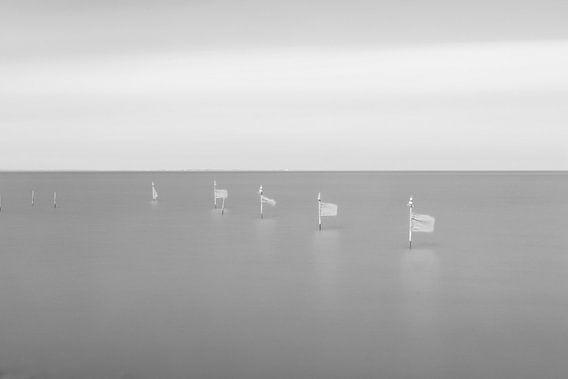 Vlaggetjes in het water