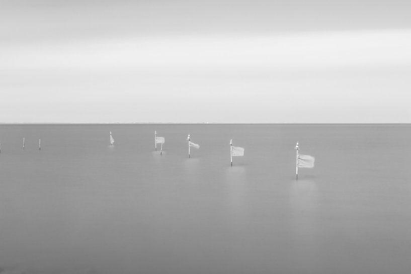Vlaggetjes in het water van Casper Smit