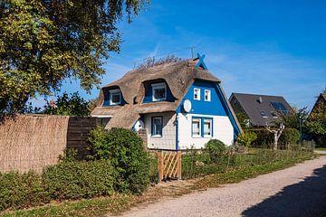 Häuser auf dem Fischland-Darß in Ahrenshoop von Rico Ködder