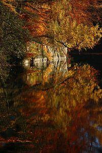golden fall IV van
