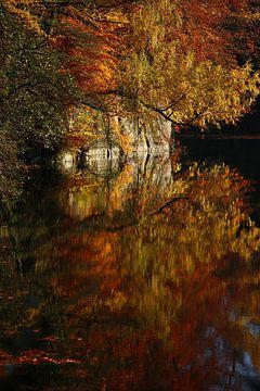 golden fall IV van Meleah Fotografie