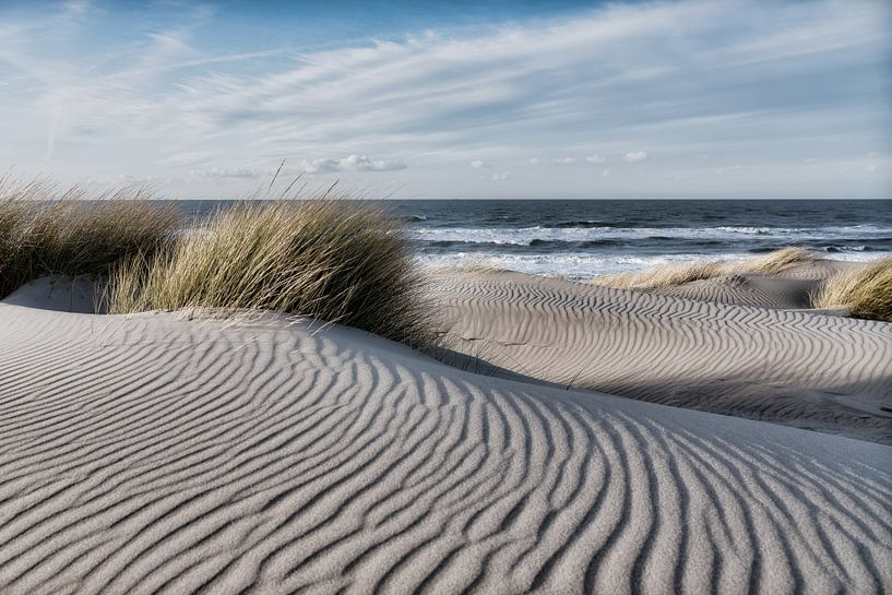 De  duinen van Bredene van Rik Verslype