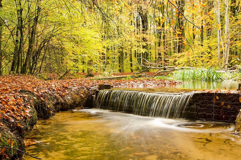 Waterval in een herfstbos van Frans Blok