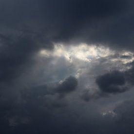 Het oog van de storm sur Amber van den Broek