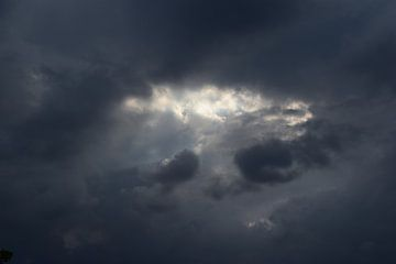 Het oog van de storm van Amber van den Broek