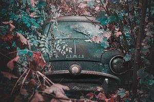 old-timer abandonné