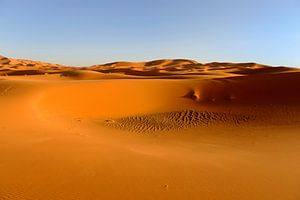 Uitgestrekt woestijngebied Marokko, de Sahara
