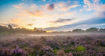 Zonsopgang Drunense Duinen von Tom Klerks