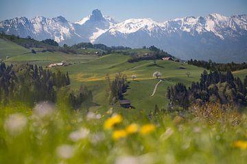 Printemps à Entlebuch sur Franziska Jungen