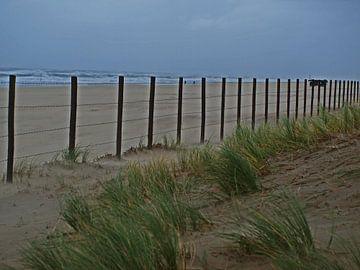 Strand tijdens storm van