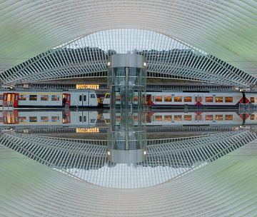 Trainstation Liege(Luik) van