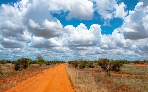 Dirt Road in Africa van Alex Hiemstra