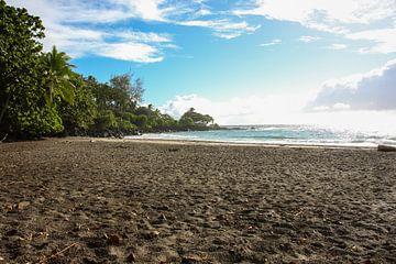 Prachtig tropisch strand van