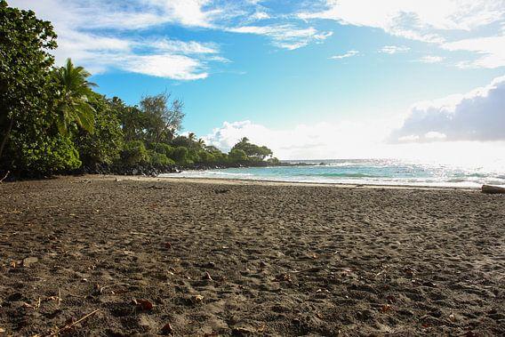Prachtig tropisch strand van Louise Poortvliet