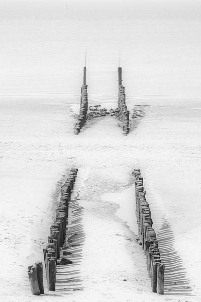 Palenrij op het strand van Vlissingen van Art by Jeronimo