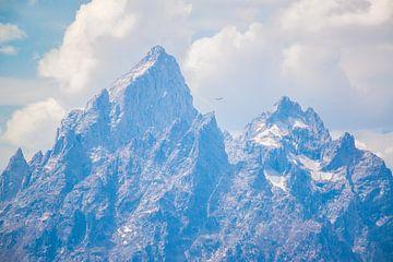 Small bird in the Skye. Grand Teton, US von Rutger-Jan Cleiren