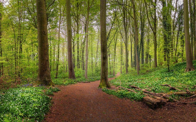 Enjoy the nature van Wim van D