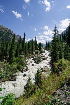 Waterval in de bergen van Karakol van Mickéle Godderis