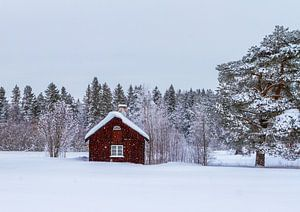 Een winterdag in het noorden van Zweden