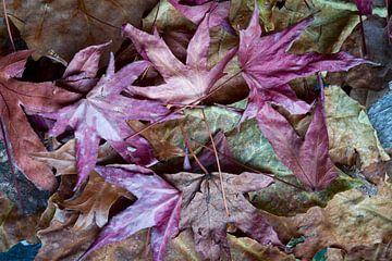 natuur in paars en groen van Eugene Winthagen
