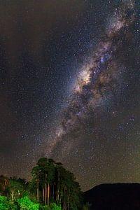 Melkweg Ranomafana